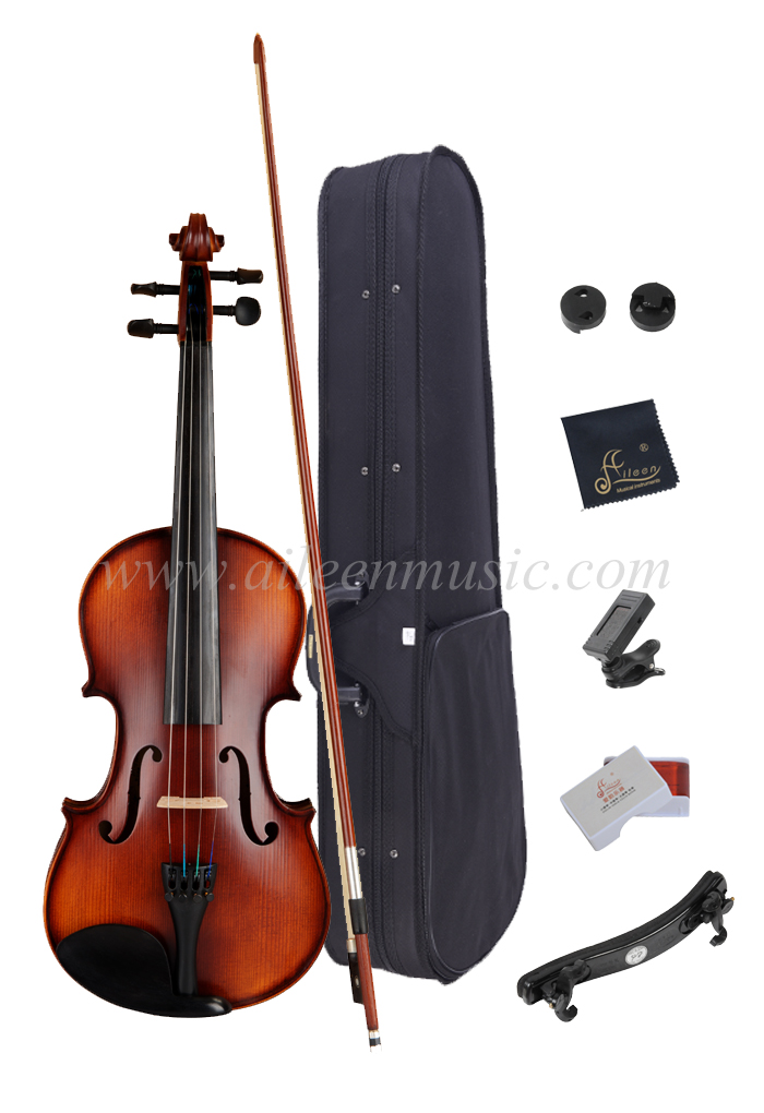 Selected Solidwood with All Accessories Advanced Student Violin Outfit (VG107S)